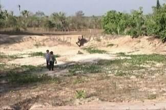 Estiagem castiga os municípios do leste maranhense - Em Caxias, comunidades rurais não tem água nem para matar a sede dos animais.