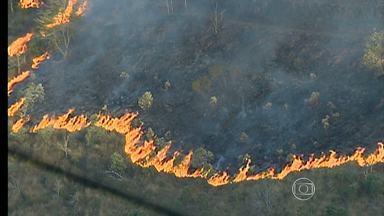 Incêndio destrói quase 50 hectares de mata em Juiz de Fora - As chamas começaram na tarde desta sexta-feira (20).