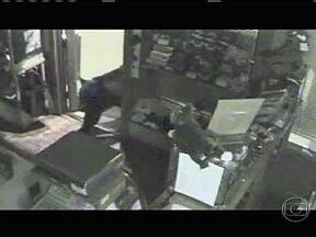 Urso invade loja de chocolate e come 40 quilos do doce nos EUA - Animal quebrou a fechadura, segurou a porta com a pata e se esbaldou. Pegava um monte de chocolate e ia comer do lado de fora, voltava e fazia a mesma coisa.