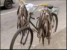 Cerca de 20kg de traíra são apreendidos em Ipatinga - Ambulantes foram autuados por não possuírem carteiras de pescadores.