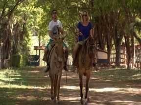 Muares - Fela e Naty visitam um criatório de mulas em Laranjal Paulista