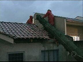Uma árvore caiu em cima de uma casa durante o temporal de segunda-feira - A chuva forte e o vento causaram prejuízos também em outras regiões da cidade.