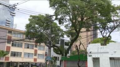 Corte de cabos pode deixar muita gente sem telefone - Prefeitura já anunciou que cabos em postes, que não tenham identificação, serão retirados a partir de segunda-feira.