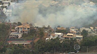 Incêndio em mata assusta moradores de condomínio de Nova Lima, na Grande BH - Fogo começou na madrugada desta quinta-feira (14). Chamas foram controladas somente por volta das 10h.