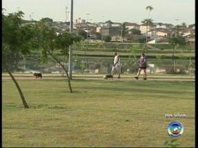 Pesquisa revela que metade da população não faz exercícios físicos - Mais da metade da população brasileira nunca fez qualquer tipo de atividade física. A conclusão é de uma pesquisa realizada pelo Sesc. Veja no vídeo do Bom Dia Cidade.