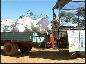 Embalagens vazias de defensivos são recolhidas em Capão Bonito - A Associação dos Distribuidores de Insumos Agrícolas do Estado de São Paulo (Adiaesp) promove ação de recolhimento de embalagens vazias de defensivos agrícolas em Capão Bonito (SP). As atividades seguem até sexta-feira (6)