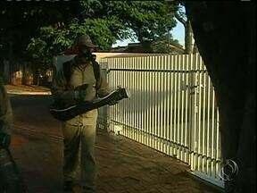O fumacê está nas ruas de Campo Mourão - A intenção é evitar uma nova epidemia de dengue na cidade