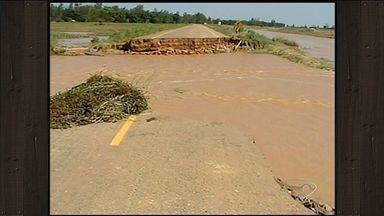 Asfalto cede em Linhares, ES, e interrompe acesso a fazendas - Por conta da cheia do rio, muitos animais morreram e produções inteiras foram perdidas.