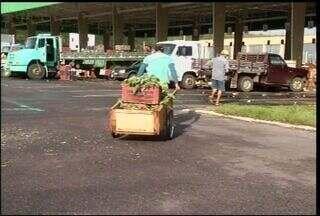 Comerciantes de frutas do Cariri comemoram nova estrutura para trabalhar - Trabalhadores vendem seus produtos na Ceasa de Barbalha.