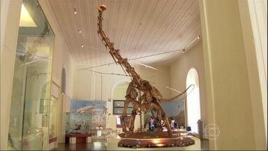 Museu Nacional recebe novas atrações no Rio - O museu é o mais antigo do país e está perto de completar 200 anos. Entre as novas atrações estão 3,5 mil peças de coleção científica, como um fóssil de dinossauro.