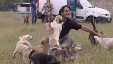 Associação resgata milhares de animais abandonados em Peruíbe - Trabalho já é feito há mais de oito anos em Peruíbe, no litoral de São Paulo.