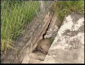 Moradores de Prudente reclamam do descaso em parques - Mato alto e falta de manutenção dificultam o lazer nestas áreas.