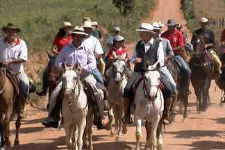 História do cavalo mangalarga passa por uma estrada real de Minas Gerais - Os primeiros cavalos chegaram ao Brasil na época do descobrimento.