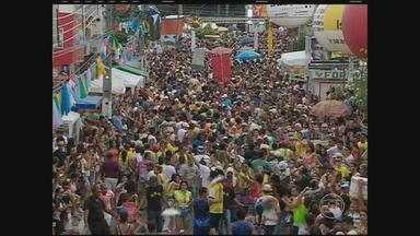 Bloco Lira da Tarde atrai milhares de pessoas às ruas de Pesqueira - Tradição já tem 76 anos. Na cidade de Bom Jardim, há atividades para crianças e adultos.