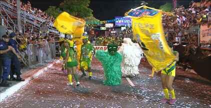 Desfiles das Ala Ursas animaram a avenida Duarte da Silveira, em João Pessoa - Confira como foram os desfiles de ontem à noite.