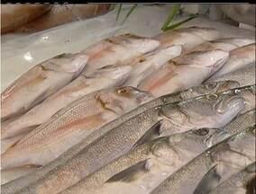 Quaresma faz aumentar o comércio de peixes em Cabo Frio, RJ - Aumento das vendas se deve as penitências praticadas por fiéis católicos.Nas peixarias da cidade, movimento deve crescer cerca de 40%.