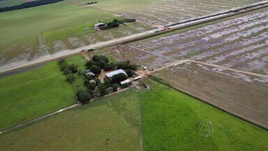 MT Rural fala sobre chuvas que atingem lavouras no estado - O MT Rural deste sábado vai falar sobre chuvas que atingem lavouras no estado.