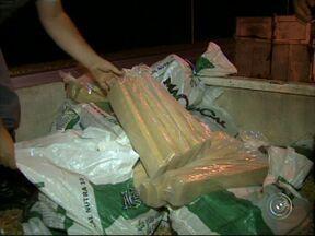 Polícia apreende quase meia tonelada de maconha escondida em carreta - Droga estava misturada a uma carga de soja, foi encontrada na rodovia Castello Branco, em Itu, e seria levada para o Guarujá.