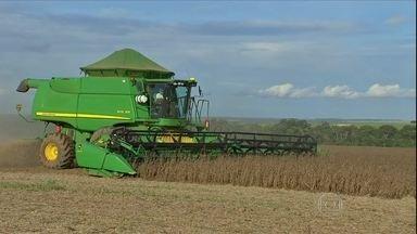 Chuva diminui na região central de Mato Grosso - A chuva foi menor na região central de Mato Grosso e permitiu que os agricultores acelerassem a colheita da soja.