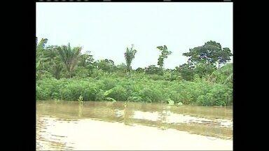 Chuva no Acre provoca prejuízos no campo - A chuva tomou conta do estado e o nível dos rios não para de subir. Agricultores e piscicultores já acumulam prejuízos.