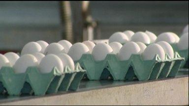 Preço do ovo está em alta - Além da chegada da quaresma, onde o consumo de ovos aumenta, o calor em excesso reduziu a oferta. Granjas de Minas Gerais estão recusando pedidos.