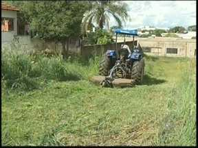 Prefeitura de Votuporanga limpa terrenos baldios para tentar combater a dengue - Em Votuporanga, a prefeitura está limpando terrenos baldios para combater a dengue. É que a cidade já registrou mais de 400 casos da doença neste ano, o que caracteriza uma epidemia.