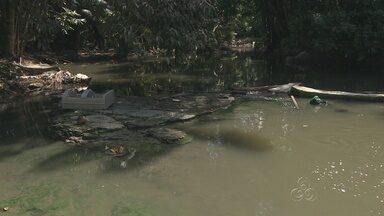Em Manaus, degradação do igarapé do Mindu preocupa autoridades - Segundo especialistas, o igarapé ainda tem salvação.