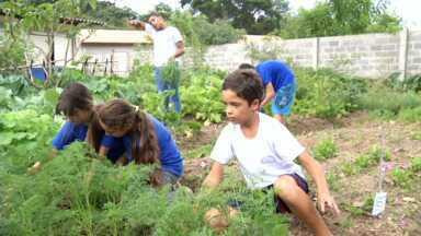 Paulinho da Escola visita estudantes de Visconde de Mauá, RJ - Parceiro dos Estudantes foi conferir um projeto na Escola Antônio Quirino; alunos auxiliam no cultivo de uma horta agroecológica.