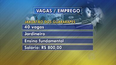 Agência do Trabalho de Jaboatão traz mais de 60 oportunidades de emprego - São 40 vagas para jardineiro, 25 para vendedor e três para consultor de vendas.