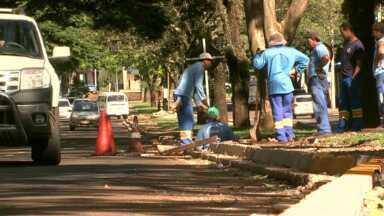 Obras na avenida Brasil de Maringá são retomadas - Depois de um mês com os serviços parados, o trabalho foi retomado, mas é considerado lento por quem passa pelo local.