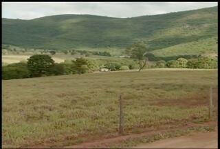 Falta de chuva no Norte de Minas compromete qualidade das pastagens - Alimentar o gado tem sido um desafio para o produtor do Norte de Minas.