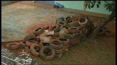 Falta de cuidados com dengue é flagrada em escola - Numa cidade onde os casos de dengue aumentaram muito este ano, uma escola está cercada de pneus amontoados.