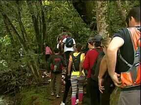 Grupo aproveita o feriado para fazer trilha e curtir a natureza - A galera de Cascavel acordou cedo para fazer uma caminhada de 4 horas no meio da mata, às margens do Rio das Antas