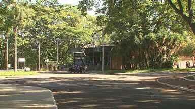 Ribeirão quer criar área de projetos culturais no complexo do Morro do São Bento - Grupos ligados ao meio ambiente não querem que festas sejam realizadas no local para preservar a qualidade de vida dos animais do bosque.