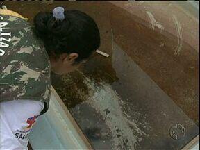 Chega de Dengue: de olho na água parada, Umuarama começa a multar na quinta - Quem tiver água com larvas da dengue em casa, vai receber multa e responder processo em Umuarama. Decisão foi do Ministério Público e Secretaria de Saúde.