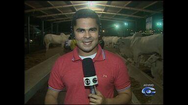 Parque da Pecuária realiza ExpoAlagoas Genética, nesta quarta-feira (14), em Maceió - O evento começa às 20 horas.