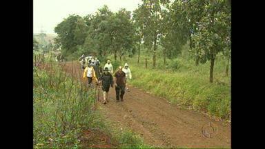 Fieis começam caminhada de 4 dias de orações em Apucarana - O grupo de 35 pessoas saiu do Parque Santo Expedito para a caminhada de 100 quilômetros e que vai durar 4 dias.