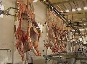 Alta demanda em matadouros preocupa fiscais da Adagro - O abatedouro de Garanhuns ocorre o abate de animais para várias cidades.