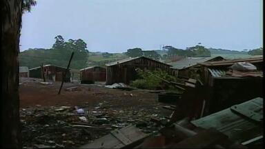 PF apreende espingarda que teria sido utilizada por índios para matar agricultores - Demarcação de terra mobiliza líderes de Faxinalzinho, RS, que foram até Brasília para discutir o assunto.