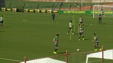 Seleção da Austrália treina no ES - Confira imagens do treino no estádio da Desportiva Ferroviária.