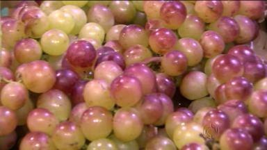 No campo uvas são jogadas fora enquanto no supermercado preço passa de R$ 7 - Voluntários buscam uvas para doação em Marialva