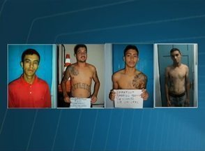 Suspeitos de chacina em PE têm fotos e nomes divulgados pela Polícia Civil - Segundo delegado, quatro homens participaram do crime em Vertentes. População pode informar à polícia sobre o paradeiro dos foragidos.
