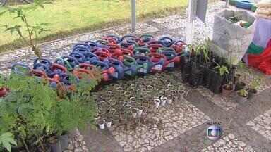 Camaragibe recebe ação especial em defesa do meio ambiente - Tem troca de material reciclável por alimentos, entrega de mudas, entre outras atividades.