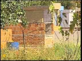 Cemitério de Assis convoca donos de jazigos para reformar túmulos destruídos - A administração do cemitério municipal de Assis (SP) está convocando os donos dos túmulos para que reformem os jazigos, já que mais 1.200 estão quase que totalmente destruídos.