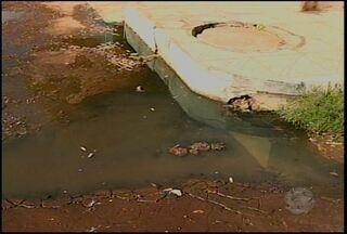 Esgotos estourados preocupam moradores do bairro Quati 1, em Petrolina - O problema vem afetando as casas do bairro.