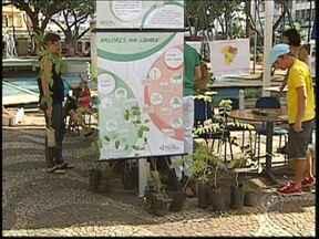 Dia Mundial do Meio Ambiente distribui mudas de árvores em Rio Preto, SP - A programação do Dia do Meio Ambiente em Rio Preto (SP) foi concentrada na Praça Rui Barbosa. Mudas de árvores foram doadas e os moradores receberam orientações sobre a coleta seletiva de lixo.