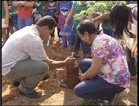 Dia do Meio Ambiente tem comemoração especial em Valadares - Plantio de mudas nativas marcou a abertura de projeto simbólico.