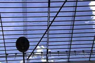 Presos fogem de delegacia durante a madrugada em Aparecida de Goiânia - Os sete detentos arrombaram o cadeado, serraram grade e pularam o muro. Um dos homens que conseguiu escapar tinha sido preso horas antes.