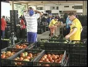 Produtores de verduras e legumes do Leste de Minas estão insatisfeitos com vendas - Queda está ligada com a pequena variação climática de 2014.