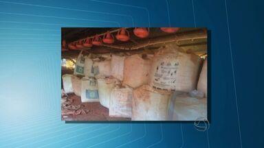 Preso suspeito de participação em roubo de carga de adubo em Rondonópolis - Preso suspeito de participação em roubo de carga de adubo em Rondonópolis.